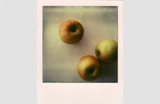 Apples - Polaroid by Barry McCullough